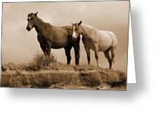 Wild Horses In Western Dakota Greeting Card