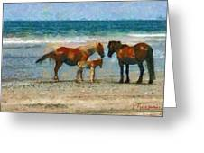 Wild Horses Of The Outer Banks Greeting Card