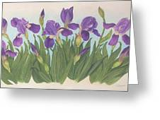 Wild Irises Greeting Card