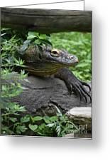 Wild Komodo Dragon Crawling Through Nature Greeting Card