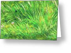 Wild Meadow Grass Structure In Bright Green Tones, Painting Detail. Greeting Card