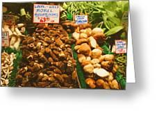 Wild Morell Mushrooms Greeting Card