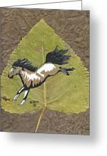 Wild Mustang #3 Greeting Card