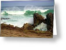 Wild Pacific Two Greeting Card