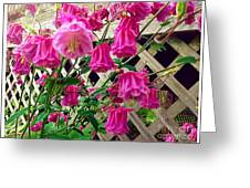 Wild Pink Beauty Greeting Card