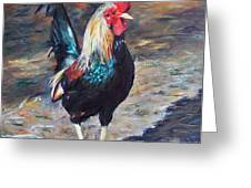 Wild Rooster Greeting Card
