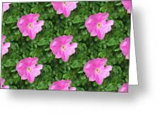Wild Rose Pattern Greeting Card