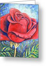 Wild Rose Two Greeting Card