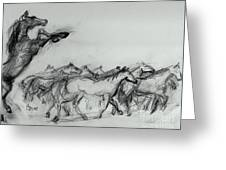 Wild Stallion And Mustangs Greeting Card