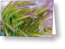 Wild Summer Grass Greeting Card