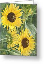 Wild Sunflowers Greeting Card by Sharon Freeman
