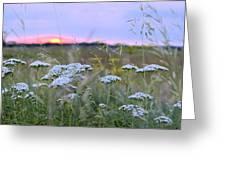 Wild Sunrise Greeting Card