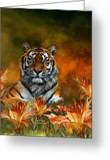 Wild Tigers Greeting Card