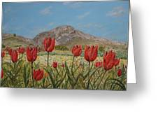 Wild Tulips In Central Crete Greeting Card