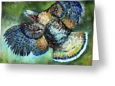 Wild Turkey In Flight Greeting Card