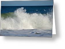 Wild Waves Greeting Card