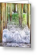 Wild Waves Under The Boardwalk Greeting Card
