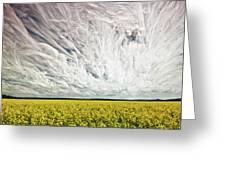 Wild Winds Greeting Card