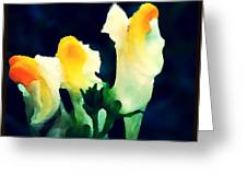 Wild Yellow Flowers On Dark Background Greeting Card
