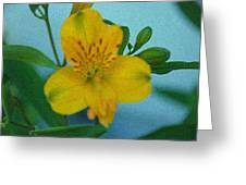 Wild Yellow Lilly Greeting Card