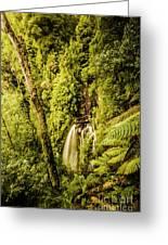 Wilderness Falls Greeting Card