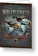 Wilderness Mallard Greeting Card