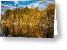 Wilderness Pond 3 Greeting Card
