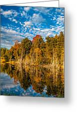 Wilderness Pond  Greeting Card