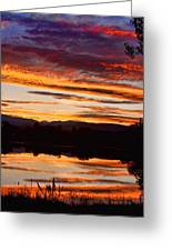Wildfire Sunset 1v  Greeting Card