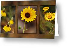 Wildflower 3 Greeting Card