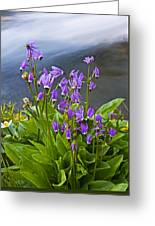 Wildflower Cascade Greeting Card by Mike  Dawson