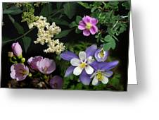 Wildflower Collage Greeting Card