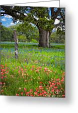 Texas Pastoral Landscape Greeting Card