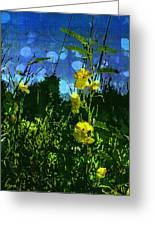 Wildflower Field Greeting Card