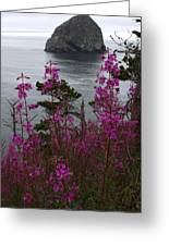 Wildflower Lookout Greeting Card