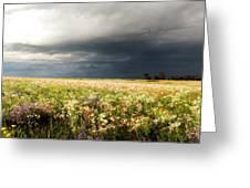 Wildflower Panorama 2008 Greeting Card