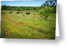 Wildflower Pastures On Willow City Loop Greeting Card