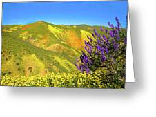 Wildflower Power Greeting Card