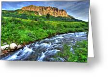 Wildflower River Greeting Card