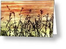 Wildflower Sunrise Greeting Card