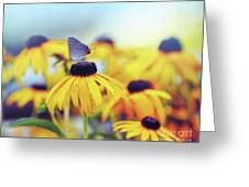 Wildflower Visitor Greeting Card