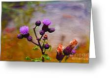 Wildflower Watercolour Greeting Card