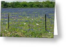 Wildflowers - Blue Horizon Too Greeting Card