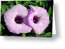 Wildflowers - Inseparable Greeting Card