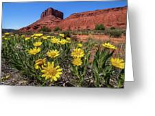 Wildflowers And Butte Greeting Card