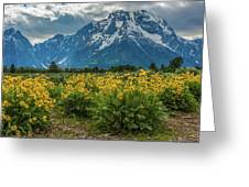Wildflowers And Mount Moran Greeting Card