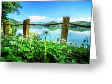 Wildflowers At The Lake In Spring Greeting Card