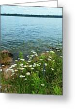 Wildflowers By The Lake  Greeting Card