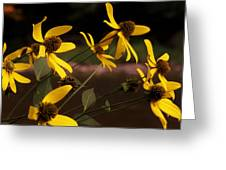 Wildflowers Creekside Greeting Card