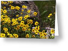 Wildflowers Honoring Mary Jabens Greeting Card